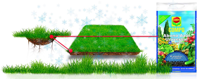 grafica-02-cuidades-del-jardin-en-otoño-e-invierno-tienda-online-shop
