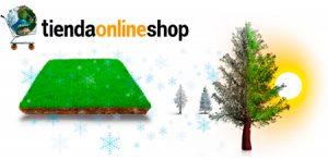 imagen-destacada-cuidados-del-jardin-para-otoño-y-el-invierno-tienda-online-shop-